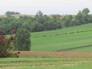 Salon des Vins de Terroir et Produits Régionaux